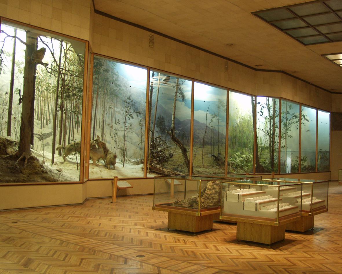 Музей Ильменского заповедника (22.03.2013)